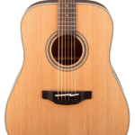 The Ultimate Takamine GD20-NS Dreadnought Natural Acoustic Guitar Review