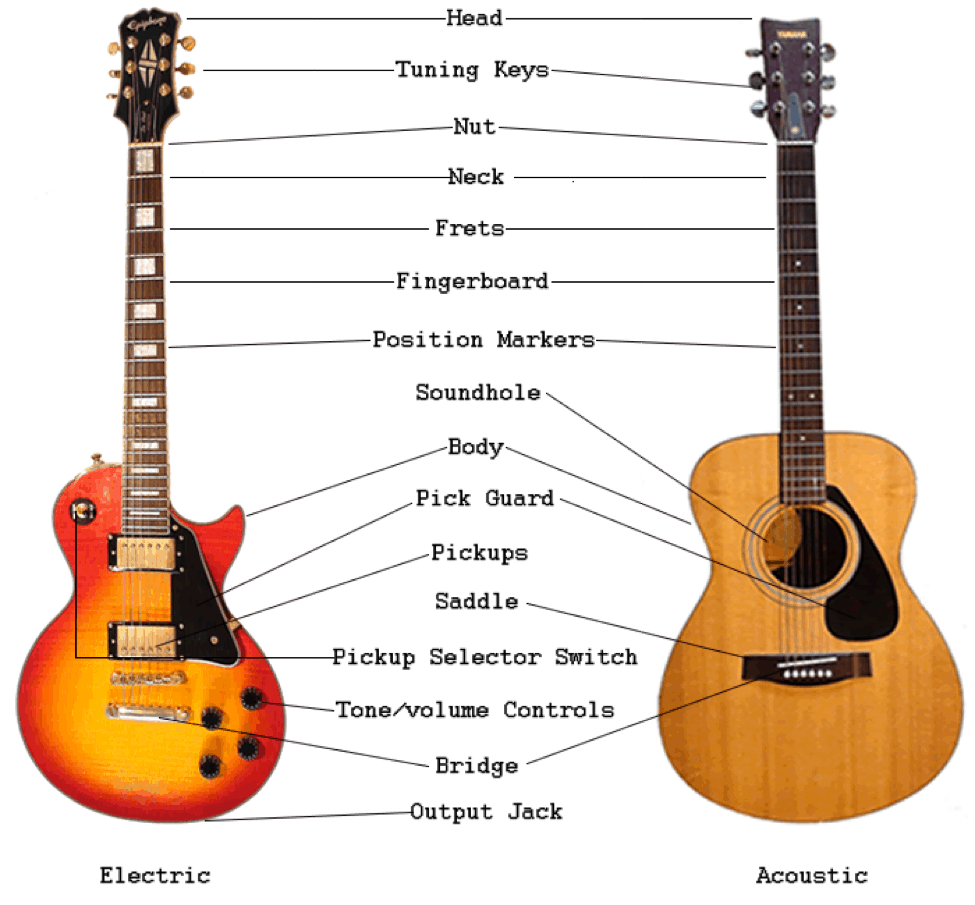 The Anatomy of a Guitar- Terms You Need to Know - Guitar Space