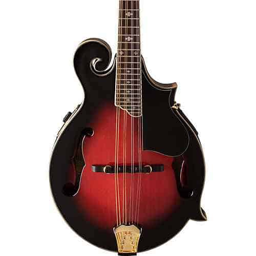 Acoustic vs electric mandolin