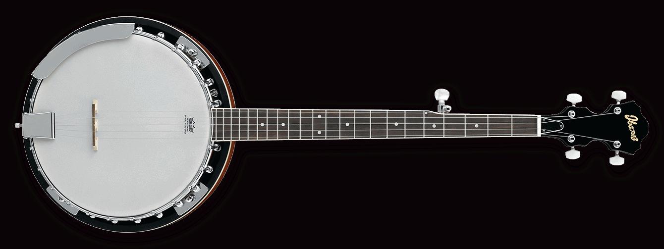 Top 5 Best Banjo Brands For Beginning Banjo Players