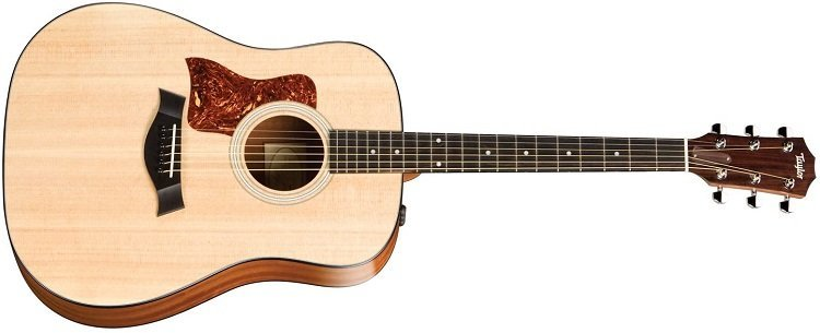 Taylor 110e Features